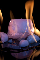Fire and Ice (Low Res) Tags: macro ice fire canon100mmmacro oppositesattract activeassignmentweekly bestofweek1 bestofweek2 bestofweek3 bestofweek4 bestofweek5 bestofweek6 bestofweek7 bestofweek8
