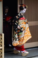 Debut (Teruhide Tomori) Tags: japan kyoto traditional maiko 京都 日本 kimono 着物 miyagawacho higashiyama 舞妓 misedashi 見世出し toshimomo とし桃