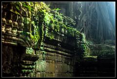Angkor detail