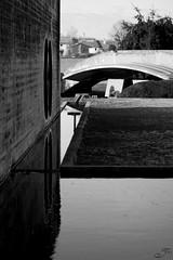Tomba Brion (Ylis7) Tags: bw white black reflection muro cemetery lines wall architecture canon concrete grey italia circles mosaico bn via chiesa morte e intersection carlo cemento acqua riflessi bianco nero architettura bianconero tomba brion vita scarpa funebre cimitero monumentale cerchi brionvega riflesso veneto linee sanvitodaltivole intersezione complesso 123bw calcestruzzo tombabrion architetturacontemporanea arcosolio flickrqcom ilcomplessomonumentalebrion