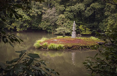 (STONE) Green Kyoto 5/5 (Alberto Sen (www.albertosen.es)) Tags: japan nikon kyoto alberto kioto japon sen d300s albertorg albertosen
