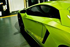 Bullfrog (Winning Automotive Photography) Tags: