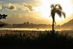 Tempestade de areia (De Santis) Tags: sunset summer brazil sun sol praia beach brasil de 1 pier mar canal sand nikon do areia horizon final santos verão paulo são josé menino por tarde horizonte submarino quebra emissário itararé d3000