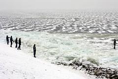 IJsselmeer (ilaury) Tags: bevroren 12 flevoland ijsselmeer 2012 urk ijs februari ijsschotsen 120212 kruiend elfstedenkoorts