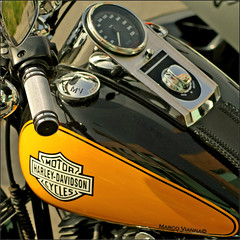 Harley Ripollet # 2 (m@®©ãǿ►ðȅtǭǹȁðǿr◄©) Tags: barcelona españa canon country harleydavidson catalunya tamron motos ripollet canoneos400ddigital m®©ãǿ►ðȅtǭǹȁðǿr◄© marcovianna tamronaf70÷300mmf456dildmacro harleydavidsonripollet2007 trobadaharleyripollet