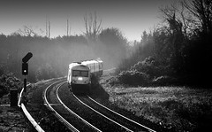 (2c..) Tags: ireland sky bw tree railway trains dailycommute best locomotive signal railways irishrail 2c kildare irishrailways irishtrains lowresolutionpreview 2c
