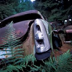 Få dippet din bil