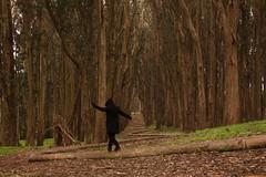 I walk the line/self portrait on The Wood Line (LOLO Italiana) Tags: sanfrancisco ca selfportrait nature landscape environmentalart andygoldsworthy thepresidio eucalyptustrees eucalyptusgrove thewoodline