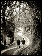 The Long and Winding Road (Feldore) Tags: road trees ireland irish man men walking long walk winding northern mchugh strangford feldore