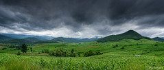 Orage imminent (-Mandraque-) Tags: canon thailand ciel 5d chiangmai canon5d nuages campagne cultures orage thailande mandraque nivoliers pierrenivoliers orageimminent