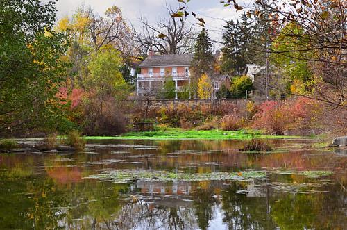 UW-Madison Arboretum 11-03-2011 207