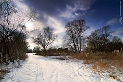 snow time - 6