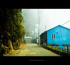 country blues - Explored! ( utathyabhadra) Tags: road street blue house mist tree fog town country explore 500v50f darjeeling 41b ghum ghoom darjiling