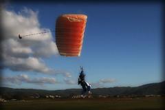 (✈✈✈Maidek✈✈✈) Tags: sky clouds canon skydiving flying italia extreme parachuting arezzo adrenalina paracadutismo blueribbonwinner paracadute goldenmix 52041 52100 platinumphoto diamondclassphotographer maidek maidecchi