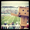 Danbo's first football game (aebphoto) Tags: danbo worldofdanbo danboard revoltechdanbo eastlansingmi michiganstateuniversity greenandwhitegame springfootballgame michiganstatespartans spartanstadium football spring instagram frommyphone iphone iphone4s iphoneography bokeh dof