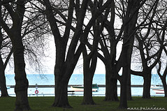 CORONATION PARK (marc falardeau) Tags: park morning trees water dawn spring nikon day sunday april lakeontario amateur gayphotographer d300s westofyonge