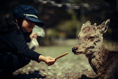 Unselfishness (Andrea Lanzilli) Tags: 2 people love japan canon children symbol mark biscuit 5d nara 50 ef dears f12