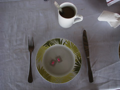 Breakfast of the Itchy (icajoleu) Tags: coffee funny medicine centralafricanrepublic dolilodge