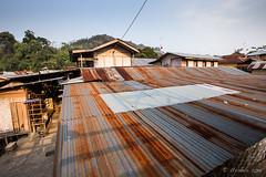 Rusty Roofs 0459 (Ursula in Aus (Resting - Away)) Tags: sumatra indonesia unesco bukitlawang gunungleusernationalpark earthasia