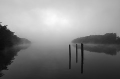 Poles @ Spencer (Colin_Bates) Tags: water fog reflections river foggy nsw spencer hawkesbury