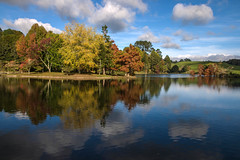 Mclaren Falls Park (Kiwi-Steve) Tags: park autumn trees newzealand lake colour fall water reflections landscape nikon nz northisland tauranga nikond90 mclarenfallspark