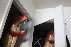 Day 141: Monster in the Closet (quinn.anya) Tags: monster closet dinosaur balloon nightmare tyrannosaurus day141 525600minutes