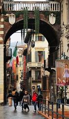 (bobbat) Tags: italy italia verona veneto