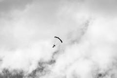 DSC_7231-2 (lenseviews.de) Tags: sports clouds blackwhite wind falling parachute