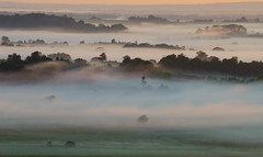 Homecoming (Richard Paterson) Tags: mist illumnation light rural south downs natinal park fields green summer dawn