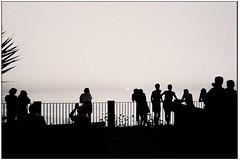 Tropea - (Vibo Valentia) (gennaromignolo) Tags: silhouette italia tramonto mare belvedere calabria vacanze controluce sud tropea vibovalentia terrazze