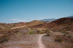 5R6K2950 (ATeshima) Tags: arizona nature havasu