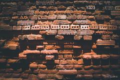 H - h: horma (dabidnet) Tags: textura pared arquitectura edificio urdaibai busturia busturialdea 27hizki27argazki