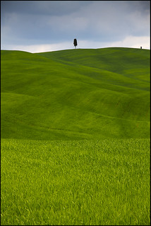 Green Loneliness