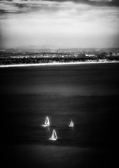 Sailing in San Diego (Dennis Herzog) Tags: california bridge blackandwhite bw monochrome boats blackwhite sailing sandiego bridges southerncalifornia sailboats coronado coronadoisland sandeigobay mygearandme blinkagain sandiegocoronodaislandbaybridge