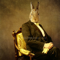 The wise man (Martine Roch) Tags: portrait man rabbit animal square chair handsome surreal surrealist gentleman martineroch thecharacters flypapertextures lescaractres