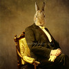 The wise man (Martine Roch) Tags: portrait man rabbit animal square chair handsome surreal surrealist gentleman martineroch thecharacters flypapertextures lescaractères