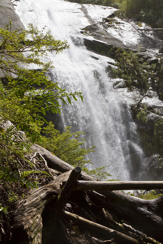 Cila - Pucon - Parque Nacional Huerquehue
