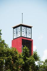 Clock Tower (Lauren Barkume) Tags: africa red sky tree tower clock southafrica photowalk artdeco johannesburg joburg 2012 gauteng johanesburg eastrand photowalkers laurenbarkume gettyimagesmeandafrica1