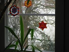 Fensterdeko mit Bgelperlen (petuniad) Tags: beads hama perler prlplattor hamabeads perlerbeads strijkkralen bgelperlen buegelperlen