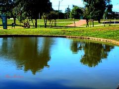 Parque Campininha das Flôres - Goiânia,Goiás, Brasil (Alan Bailão ⎝⏠⏝⏠⎠) Tags: parque brasil de avenida 24 das campinas goiânia outubro goiás campininha flôres