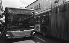 Public Transit (Jerusalem) (Fogel's Focus) Tags: israel 28mm jerusalem stock olympus d76 zuiko f28 20c acros om1n kodakd76 film:iso=100 legacypro100 developer:brand=kodak developer:name=kodakd76 725min film:brand=freestylearista freestylearistalegacypro film:name=freestylearistalegacypro100 filmdev:recipe=7516
