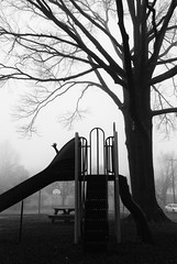 Pickering Field Playground in a fog (Anitab) Tags: park tree playground fog hand slide ambler pickeringfield