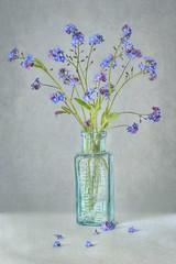 Spring Blues (Jacky Parker Floral Art) Tags: flowers blue portrait art nature glass floral vertical spring flora textures jar format blooms orientation textured myosotis forgetmenots stilllfe