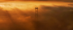 Accendo (Andrew Louie Photography) Tags: california bridge winter storm tower love fog clouds golden gate san francisco hawk anniversary south marin hill joy january headlands rays 75 drama 2012
