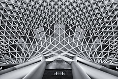 Looking Up (Daniel Borg) Tags: new roof england blackandwhite bw unitedkingdom patterns wideangle lookingup trainstation kingscross canon1022 londonstation mainlinestation canon550d