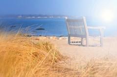 Bench For Two (floralgal) Tags: ocean beach water sand seagrass longislandsound greenwichconnecticut beachbench