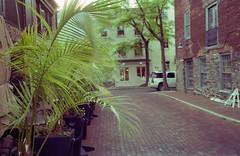 street photos-013.jpg (greauxe) Tags: 35mmfilm leicam6classic streetphotos oldtownalexandria fujipro160s dcstreetphotos zeisscbiogont2835mmzm filmexplosionblogspotcom