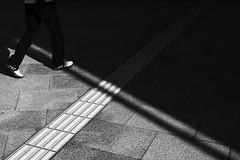 toeing the line (StephenCairns) Tags: shadow urban blackandwhite bw music japan canon explore bow string nocrop gifu fretboard 影 足 motosu toeingtheline 岐阜県 sightlines stephencairns 岐阜市 canon5dmarkii 岐阜県図書館