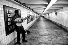 Subway Strummer II (Joe Josephs: 243,000 views - thank you) Tags: newyorkcity blackandwhite music newyork love brooklyn subway couples williamsburg relationships subways blackandwhitephotography streetmusicians williamsburgbrooklyn musicperformance newyorkcitystreetphotography williamsburgandgreenpoint joejosephs joejosephsphotography copyrightjoejosephsphotography copyrightjoejosephs2013