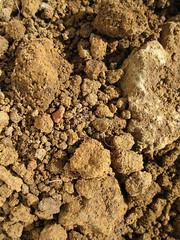 Subsoil_4630872590_l